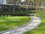 供应绿化草坪东莞园林草坪垂直绿化 室内外绿化养护 植物租摆