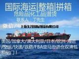 上海到美国海运专线,美国海运物流货代