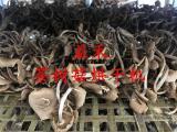 茶树菇烘干机厂家 专业生产烘干设备