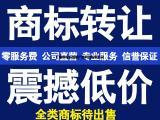 专注广州公司注册,无隐形收费,南沙政策地址免费提供