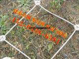 蜘蛛边坡防护网施工