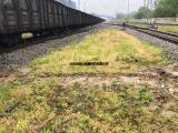 奇辉 翻车机 运煤场 电厂 拉煤车 机车到位控制系统