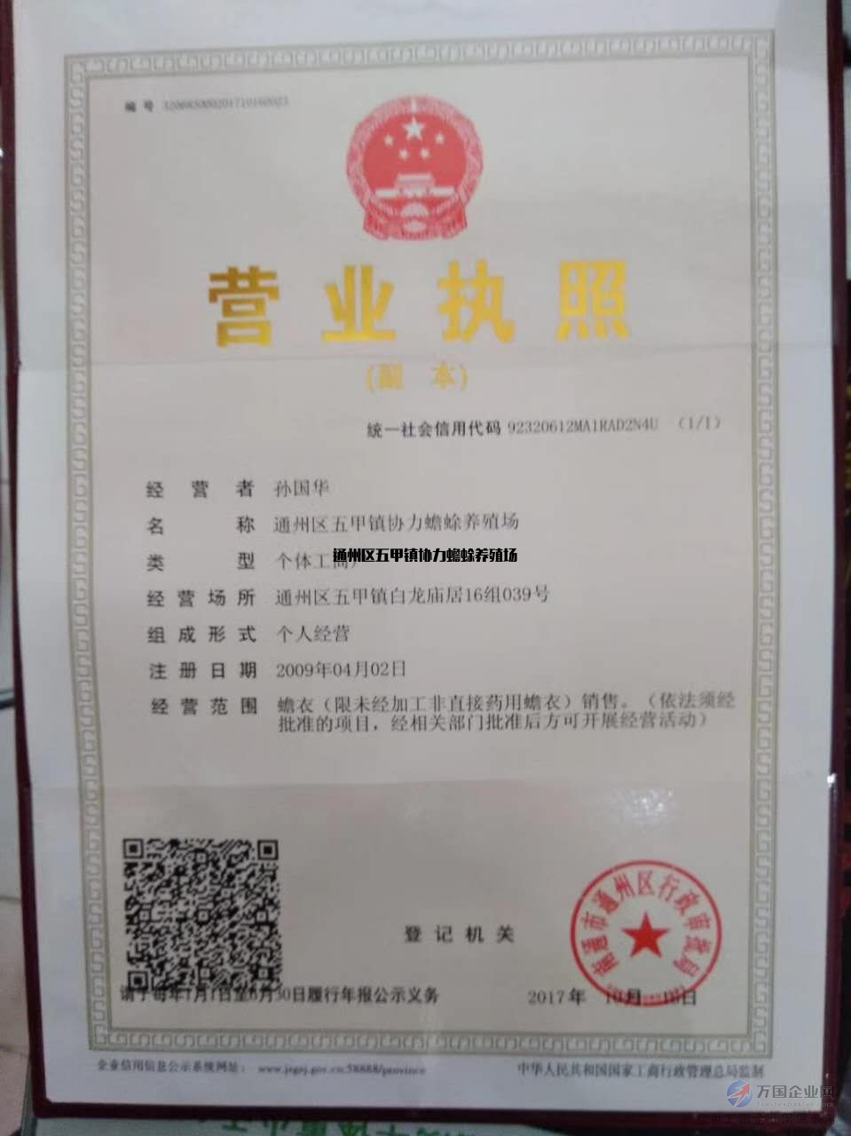 蟾蜍养殖前景及价格 通州区五甲镇蟾蜍养殖场技术培训