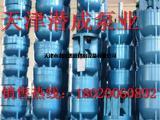 天津300米扬程,流量125方深井潜水泵报价-天津水泵厂家