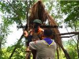 营地教育,营地教育加盟,青少年夏令营教育,小狼部落