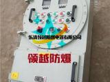 炼化厂防爆控制箱