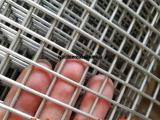 304不锈钢丝网焊接网片电焊网筛网过滤网防护网防盗网
