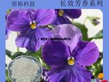 广州厂家生产檀香尤加利桂皮长效香味水乳剂/感香粉