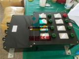 BXM8050-6K/32A防爆防腐照明配电箱