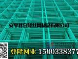 食用菌网_出菇网片_蘑菇养殖网片-登隆网业