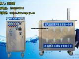 多功能蒸汽洗车机设备价格 投资小收益高创业好项目