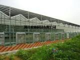 温室大棚的控制系统,智能自动化控制系统,厂家直销