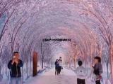 上海灯光隧道设备租赁大型灯光走廊出租出售