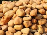 黄色鹅卵石_黄色石,园林石,黄腊石