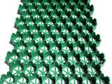 停车场绿化专用HDPE植草格