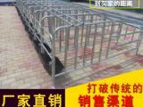 养殖舍易清洗母猪产床猪用定位栏养猪设备限位栏厂家批发