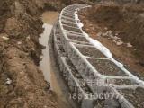 美化环境从阶梯式生态护坡做起