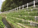 混凝土生态护坡模具产品制作特点