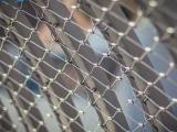 不锈钢绳网 不锈钢绳编织网 动物笼舍网