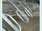 畜牧养殖设备 棚架 并列快放式棚架 奶牛养殖必备