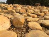 草地石黄腊石批发 园林造景石 园林石批发 良好石场