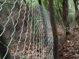 散养黑猪围栏网 散养野猪专用围栏