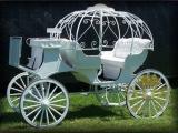 运动型南瓜马车YC-C0020 /摄影、婚庆马车、欧式马车