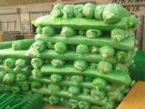 绿色防尘盖土网生产厂家