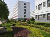 学校常用绿篱植物,四季常青绿篱植物@茗茜苗木基地供应
