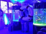 海洋生物主题活动出租观赏珍稀鱼缸展报价海狮表演租赁