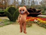 卡通服饰赣州科尼人偶道具玩偶服装网红熊装K001