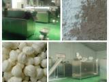 建材级预糊化淀粉生产线