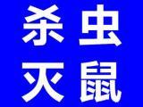 南昌杀虫公司 南昌白蚁防治中心 南昌灭蟑螂公司