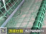 绿植攀爬网_别墅小区外墙绿化用网_鸿银丝网