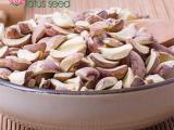 紅蓮子碎片蓮子米碎 特級湖南湘蓮 出口寸三蓮 產地批發供應