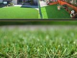 人造草坪A人造草坪批发A人造草坪直供厂家