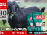 黑山羊圈养与放牧增重的饲料预混料