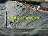 厂家直销HDPE土工膜养殖防渗膜防渗防护复合土工膜土工布批发