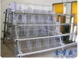 金璧盛自动化养鸡设备厂家供应各种型号鸡笼