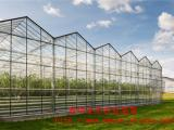 LOOK玻璃溫室造價~連棟玻璃溫室~玻璃溫室大棚施工