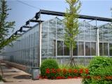 喲喲!!智能玻璃溫室||智能玻璃溫室建造||智能玻璃溫室廠家