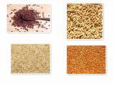 陕西滕灿豆麦谷黍类种子