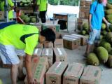 产地货源菠萝蜜新鲜现摘现发货源充足