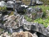 大型英石假山石批发天然造景石