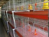 A肉鸡笼养设备  镀锌板料塔 玻璃钢料塔 养猪食槽