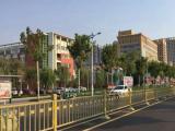 厂家直销长安街金色护栏 不锈钢绿植护栏