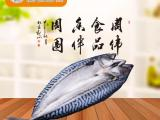 冷冻鲐鱼片批发_进口鲐鱼片批发_挪威鲐鱼片货源直供批发