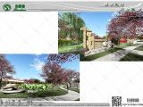 道路绿化景观设计