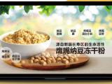 鹰嘴纳豆冻干粉(纳豆激酶纳豆菌)