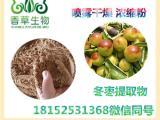 冬枣多糖30% 冬枣提取物价格 冬枣粉